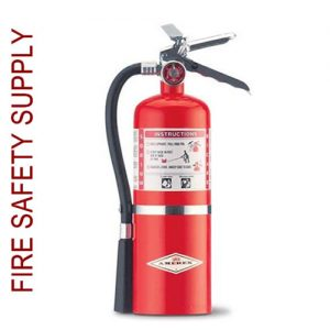Amerex B453 5.5 lb. Regular Dry Chemical Extinguisher
