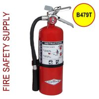 Amerex B479T 5 lb. Purple K Dry Chemical Extinguisher