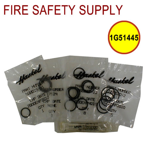 Getz 1G51445 Haskel Control Valve Repair