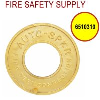 6510310 - FDC WALLPLATE 2-1/2 Inch IPS BRASS (AUTO SPRINK)